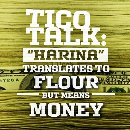 tico harina money